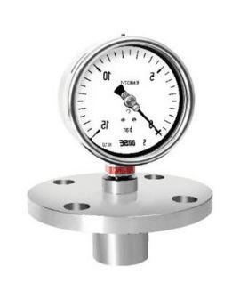 Đồng hồ đo áp suất có màng P762 Wise, Wise vietnam